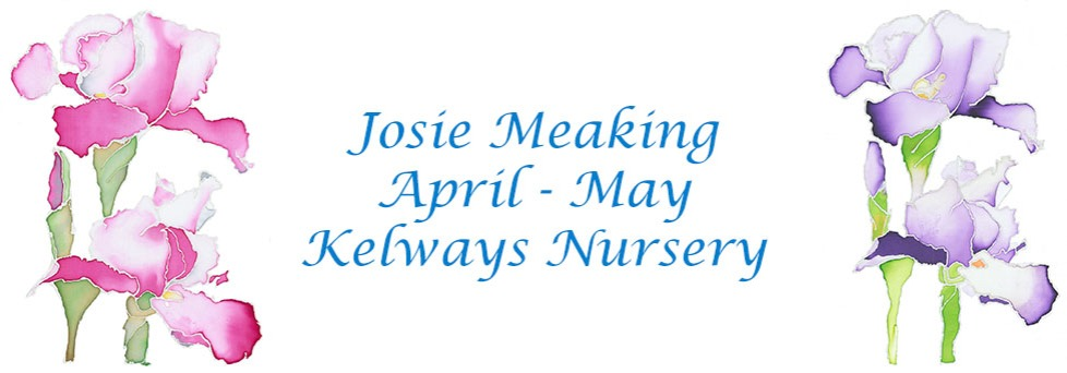 Josie Meaking Exhibit