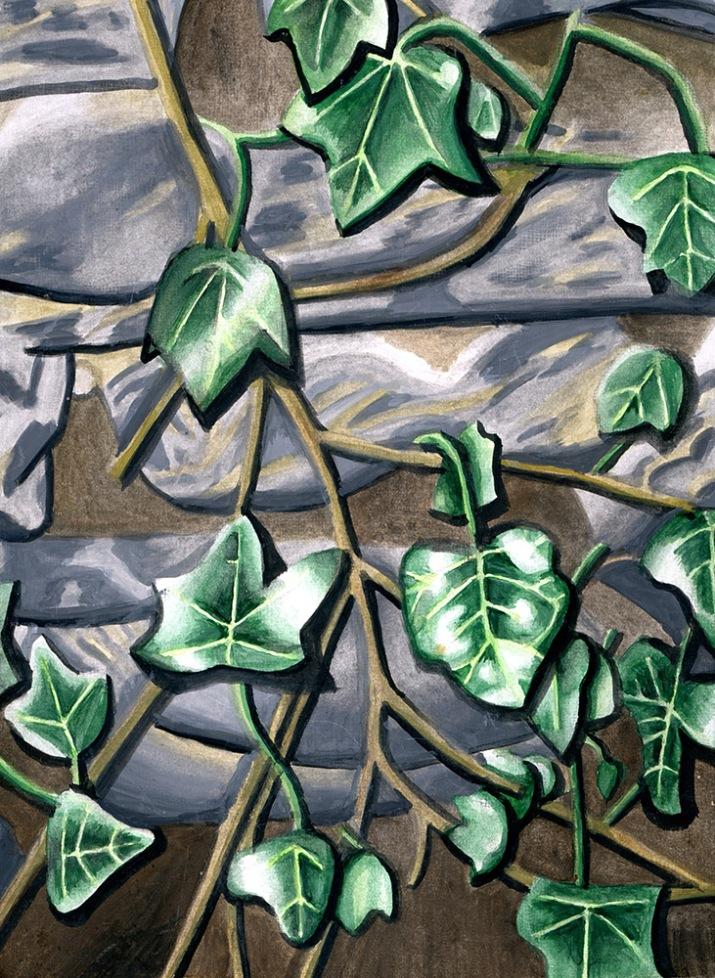 Ivy by Rachel Robbins