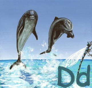 D is for Dolphins