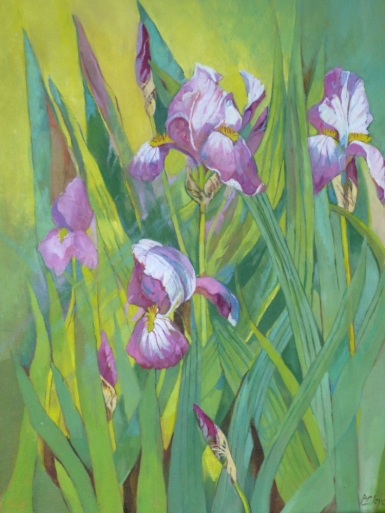 maurve iris-int